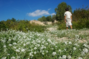 d hiking, garraf
