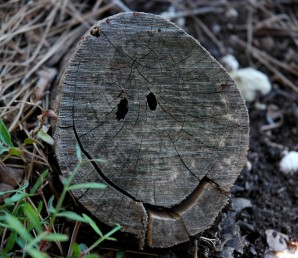 stump smiley face
