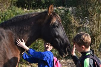 both kids with a horse
