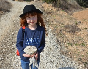 m with oyster fossil