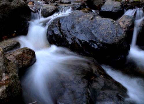 stream behind tent